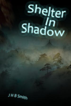 shelterinshadowsmall